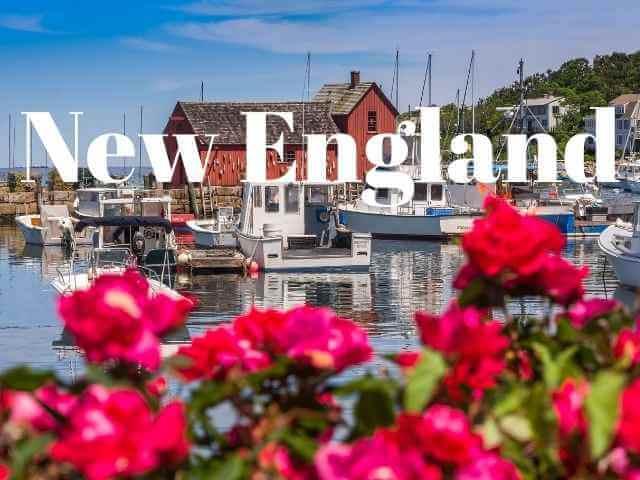 Royal Thrones New England